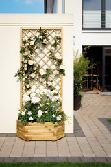 Wandpflanzkasten aus Nadelholz mit Rankgitter