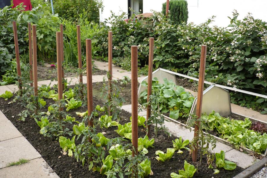 DURA Pflanzstäbe im Garten